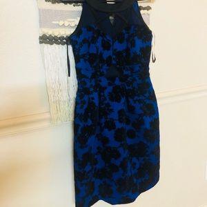 💥💥💃🏻💃🏻 5 for $25 brand new dresses